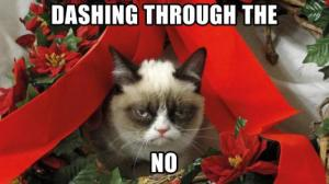 grumpy-cat-meme-christmasanimals-grumpy-cat-meme-pictures-humor-funny-cats-christmas-qcu3d2p8