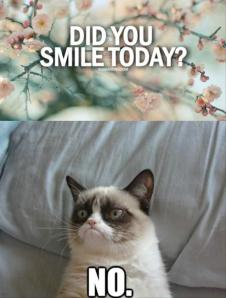 grumpy-cat-did-you-smile-today-no
