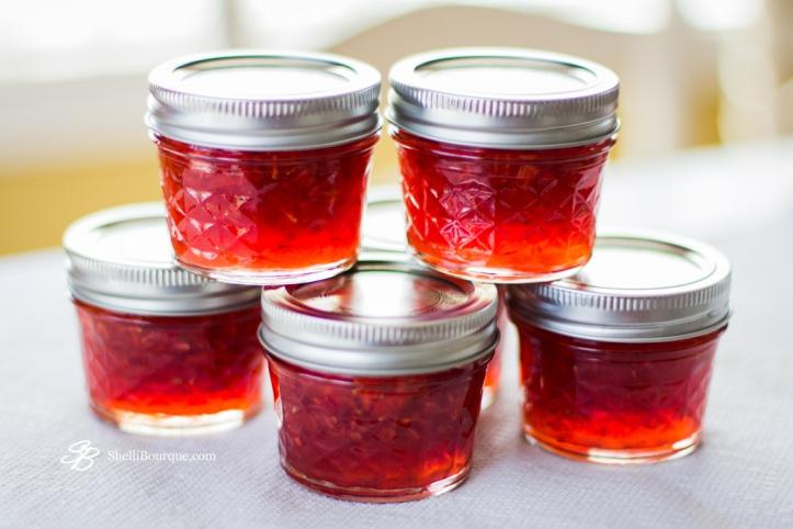 Strawberry-Jam-ShelliBourque