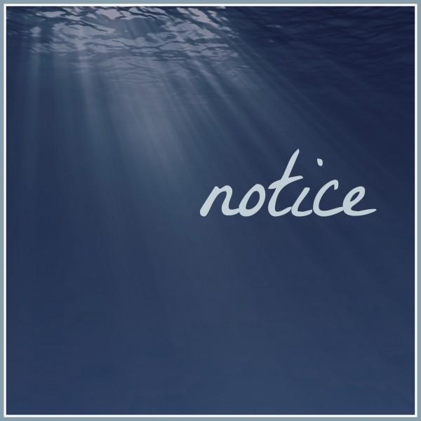 FMF-Notice-600x600