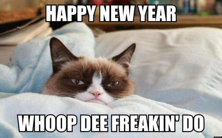 the_grumpy_cat__happy_new_year_____d_by_cartoonrockfan93-d709aa5