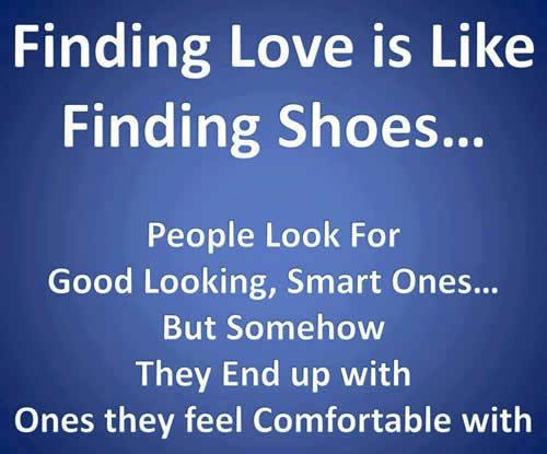 Funny Quotes About Not Finding Love : AND IF THATS NOT FUNNY, I DONT KNOW WHAT IS.
