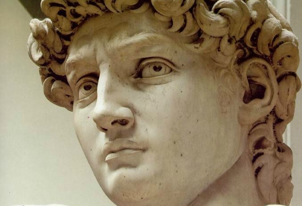 michelangelo_david_head2