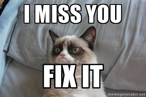 grumpy-cat-ii-i-miss-you-fix-it.jpg