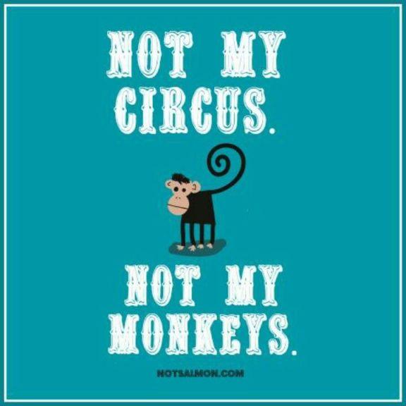 21f4233944ba19483a4df6dcadd683b6--polish-proverb-not-my-circus.jpg