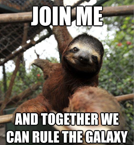 67717be56916b1c8f859c00957eb0570--sloth-memes-funny-memes.jpg