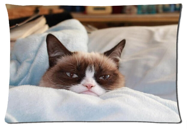 2015-New-Design-50x75cm-Nice-pillowcase-Grumpy-Cat-Sick-On-Bed-Top-Quality-Sleeping-pillow-cover.jpg_640x640.jpg